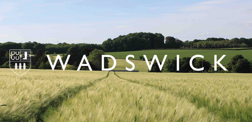Holisticvet is based at Wadswick Country Store in Corsham, Wiltshire